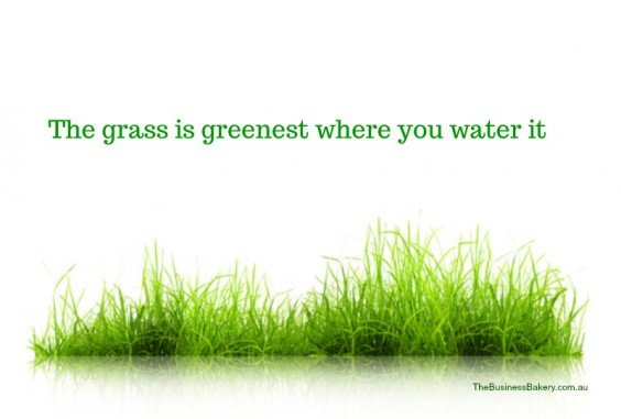 The grass is greenest where you water it